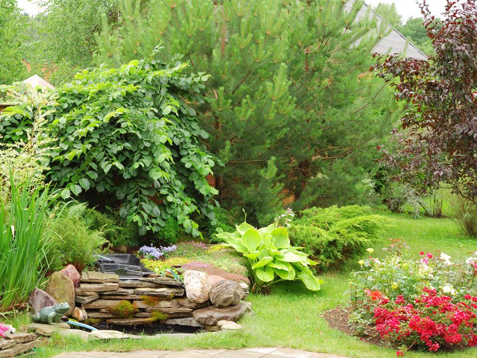 Création et entretien de jardins près de Maubeuge